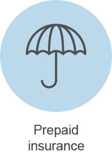 Balance Sheet Tips Short Term Assets Prepaid Insurance